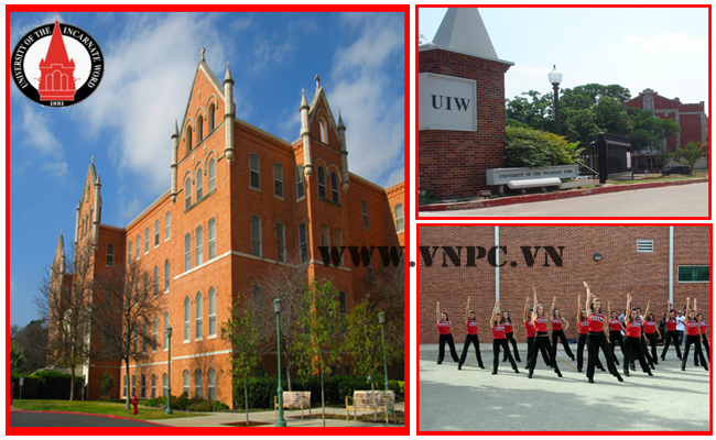 University of Incarnate Word