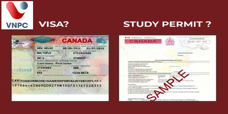 Cách phân biệt visa du học Canada (Canada student visa) và giấy phép du học study permit Canada
