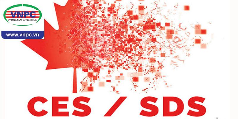 Visa SDS – Chương trình nâng cấp của visa CES