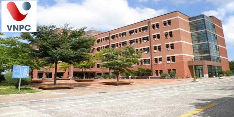 Đại học Thần học và Chủng viện Youngnam (YTUS) – Điểm đến hoàn hảo tại Hàn Quốc