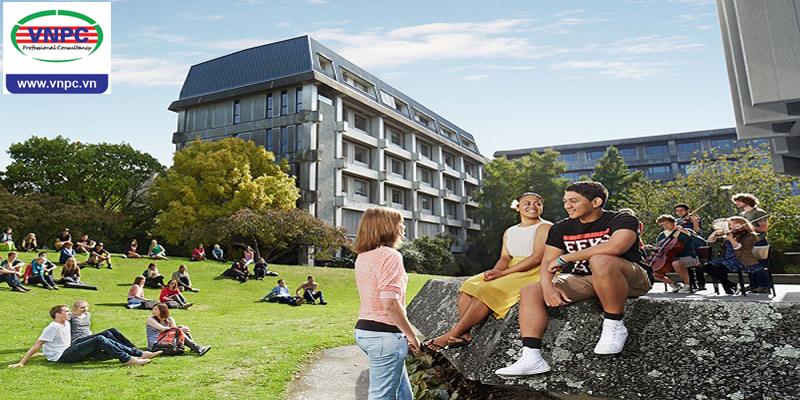 Săn học bổng du học New Zealand kỳ mùa xuân 2019 bạn đã sẵn sàng?