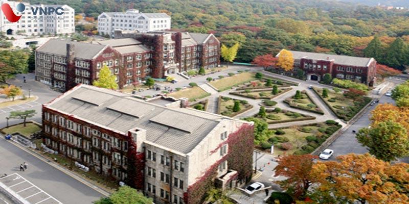 Đặt chân vào bộ tam S.K.Y quyền lực của Hàn Quốc nhờ Visa thẳng từ Đại học Yonsei