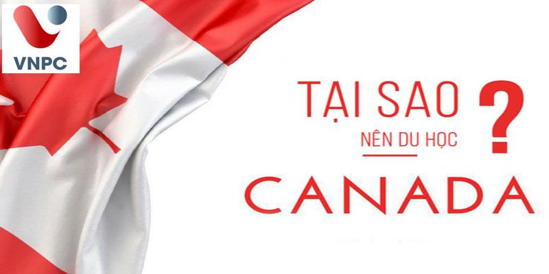 Canada mở cửa, du học sinh đã có thẻ quay trở lại học tập