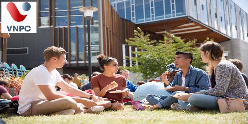 Chính sách định cư của New Zealand với các bậc học ra sao? Sinh viên được ở lại bao lâu tìm việc?