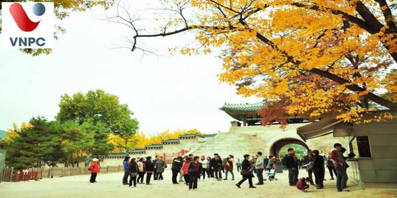 Có thể đăng ký đi du học Hàn Quốc vào thời điểm nào? Điều kiện và yêu cầu hồ sơ du học Hàn Quốc?