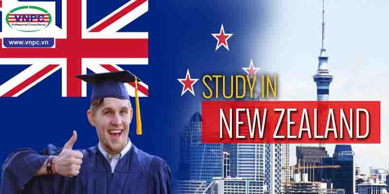 6 lời khuyên khi chọn ngành học tại New Zealand