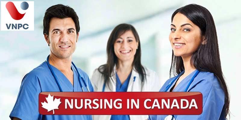 Những điều cần biết về ngành Nursing ở Canada