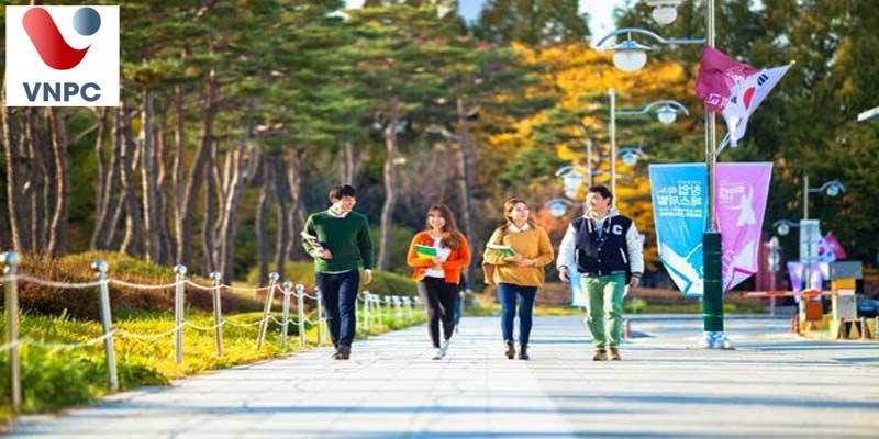 Du học Hàn Quốc: Trình độ tiếng Hàn tối thiểu là bao nhiêu?
