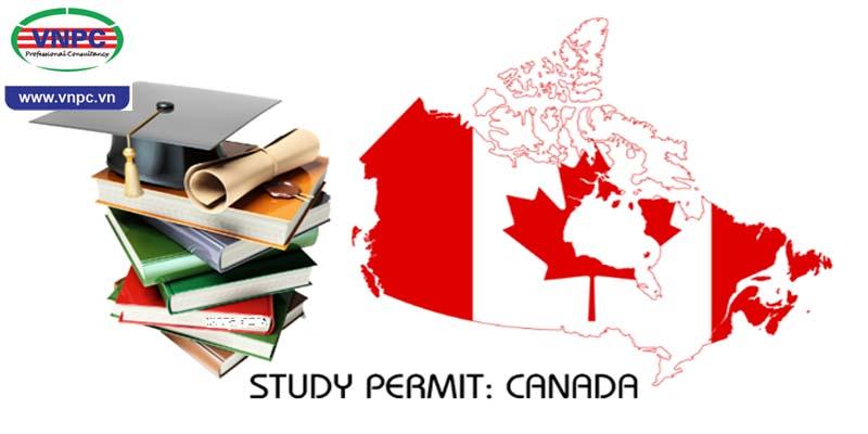 VNPC hướng dẫn gia hạn Visa và Study Permit cho du học sinh Canada
