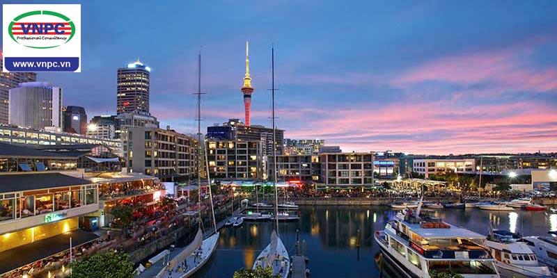4 trường đại học tốt nhất tại thành phố Auckland, New Zealand