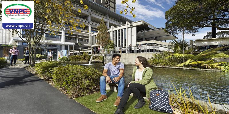 Những ngành học lọt top thế giới của 8 trường đại học hàng đầu New Zealand