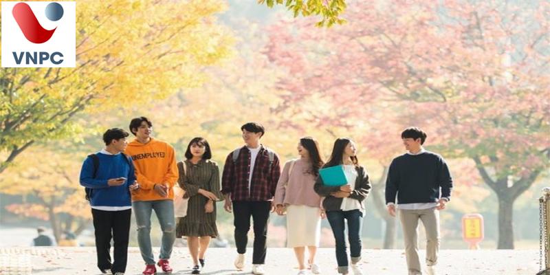 Trung tâm tư vấn du học Hàn Quốc uy tín ở Hà Nội - TPHCM (Sài Gòn)