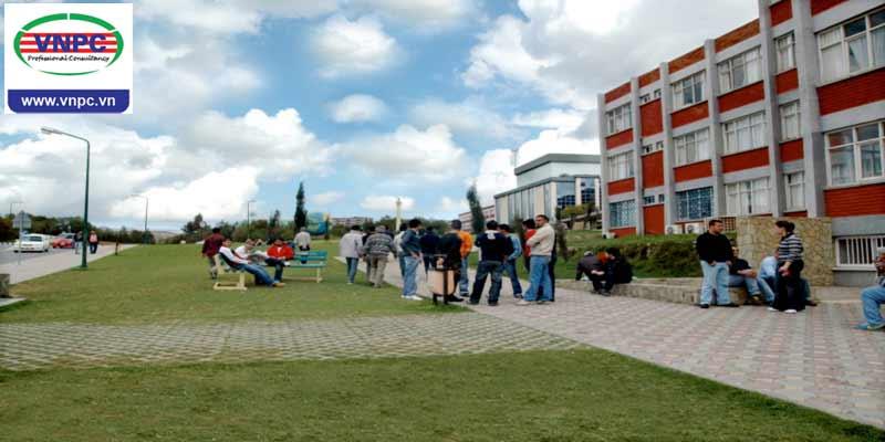 American College – Chất lượng đào tạo xứng tầm quốc tế
