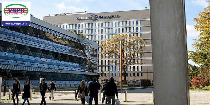 Du học tại trường đại học công lập hàng đầu Hà Lan Tilburg University