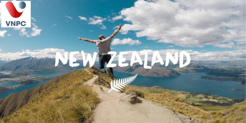 Trung tâm tư vấn du học New Zealand uy tín, chuyên nghiệp