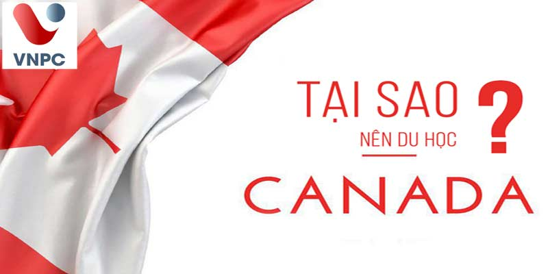 Có nên tiếp tục du học Canada trong năm 2021?