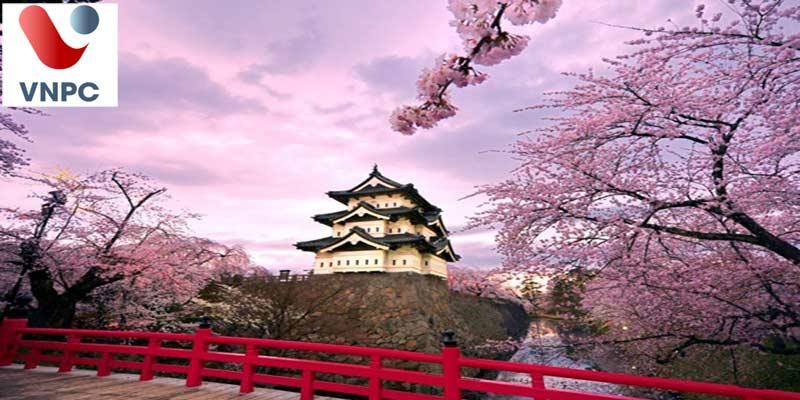 Du học Nhật Bản có những hình thức nào?