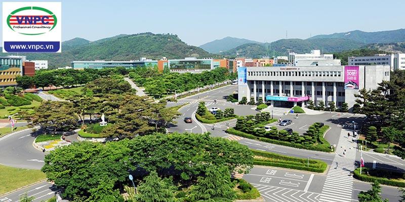 Du học Hàn Quốc với trường thuộc TOP 1% Visa thẳng Daegu Catholic University