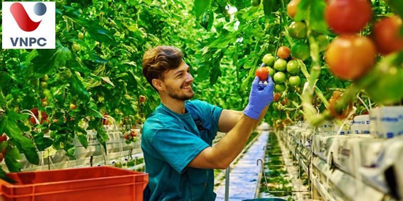 Du học Úc ngành nông nghiệp tại trường Central Queensland University