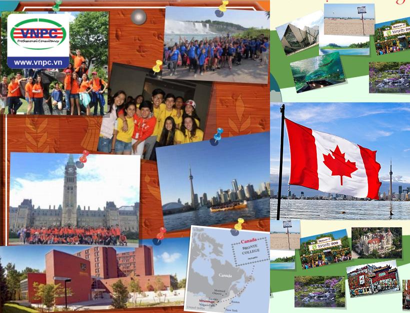 Hình ảnh chương trình du học hè Canada 2016