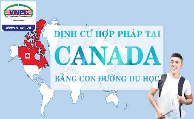 Du học Canada: Định cư Canada bằng con đường du học