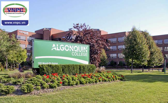 Du học Canada: Algonquin College và cơ hội khởi nghiệp tại Ottawa