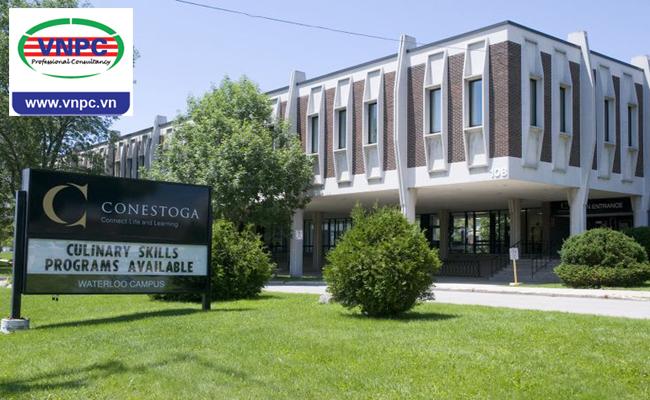 6 chương trình học hấp dẫn tại Conestoga College